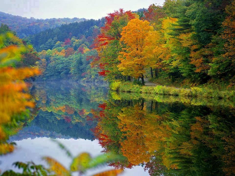 automne CUHVLEJW4AAH9Yw