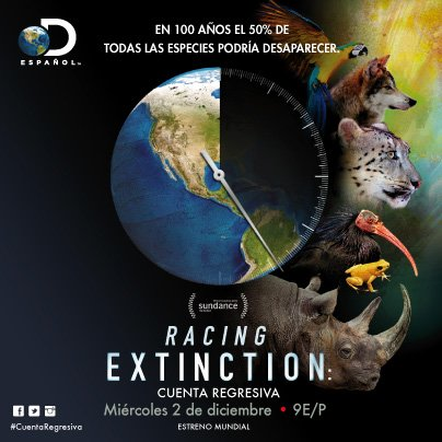 In 100 years, 50% of all species could be gone. RACING EXTINCTION: #CuentaRegresiva , global premiere. 12/2 @9E/P https://t.co/GVwn7Kf777