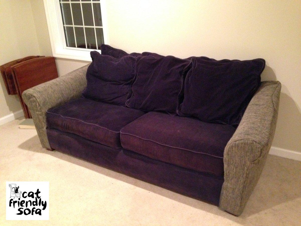 Cat Friendly Sofa على تويتر One Of