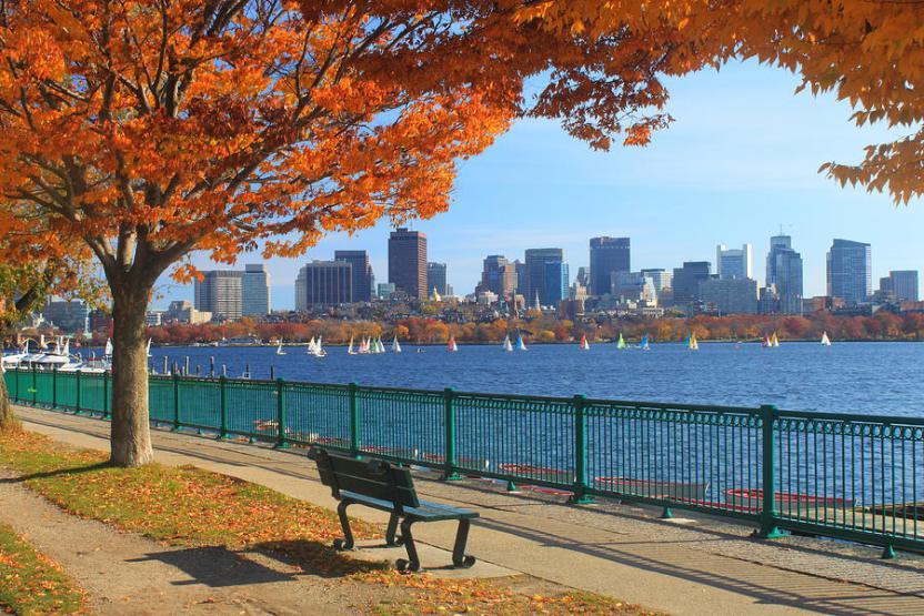 Renaissance Boston social image