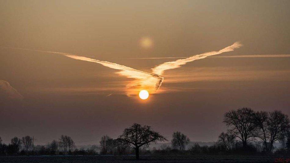 日本網友拍到自然奇景!天空中出現「不死鳥」!