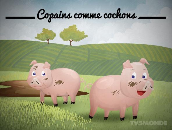 [ 프랑스어 표현 - 동물 편 ]  Copains comme cochons 직역 : 돼지 같은 친구들 의미 : 절친한 친구, 단짝 https://t.co/5a67Ch6rAJ