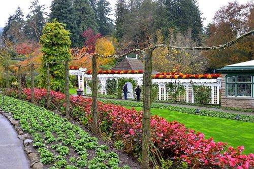 Fotos los jardines m s espectaculares del mundo azteca for Jardines espectaculares