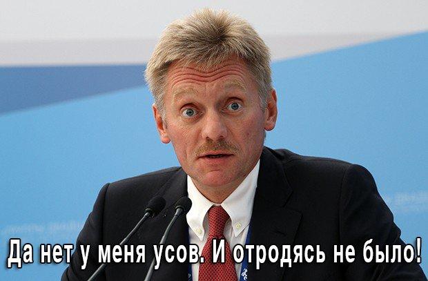 """""""Мы не видели никаких доказательств"""", - Песков про доклад о крушении MH17 - Цензор.НЕТ 7069"""