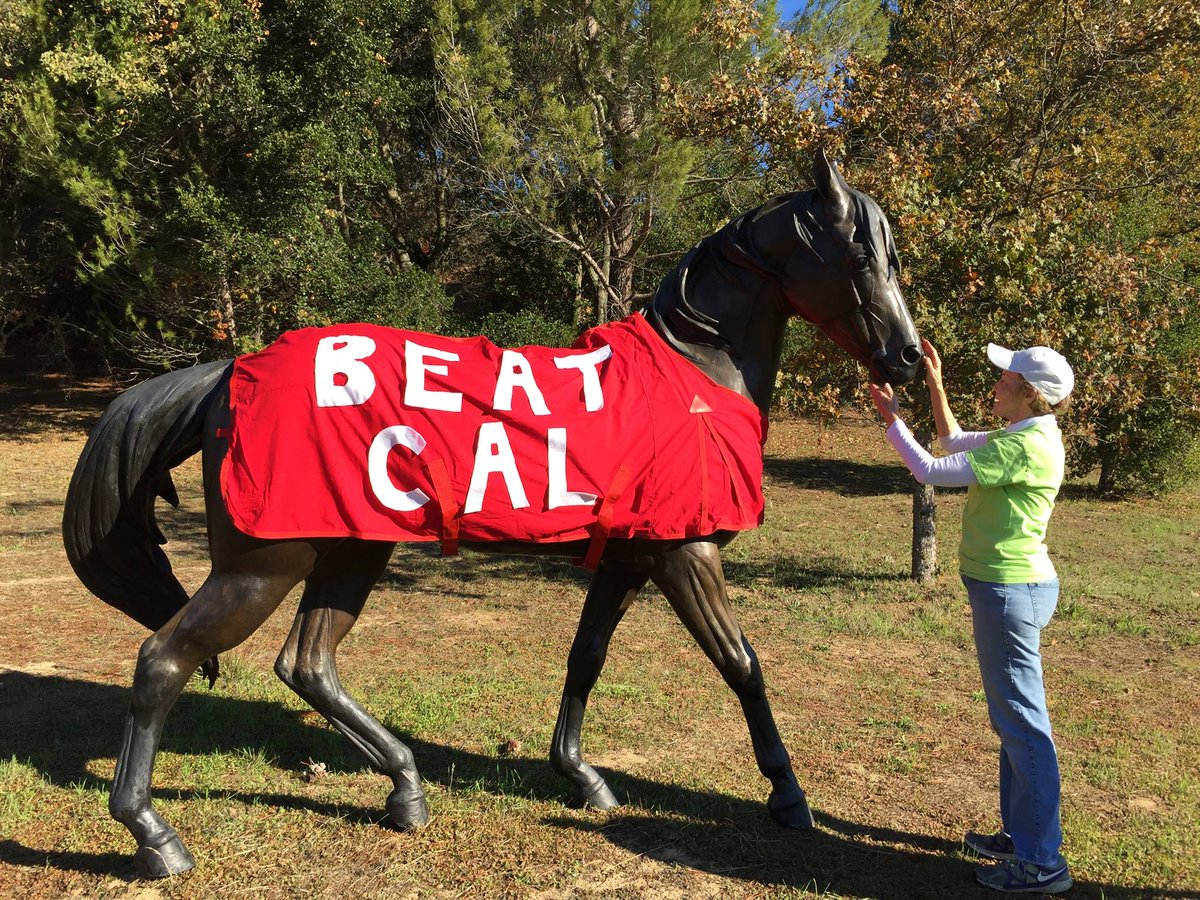 Even the horses around here are in The Big Game spirit! #GoStanford #BeatCal https://t.co/kylHe0TDbI