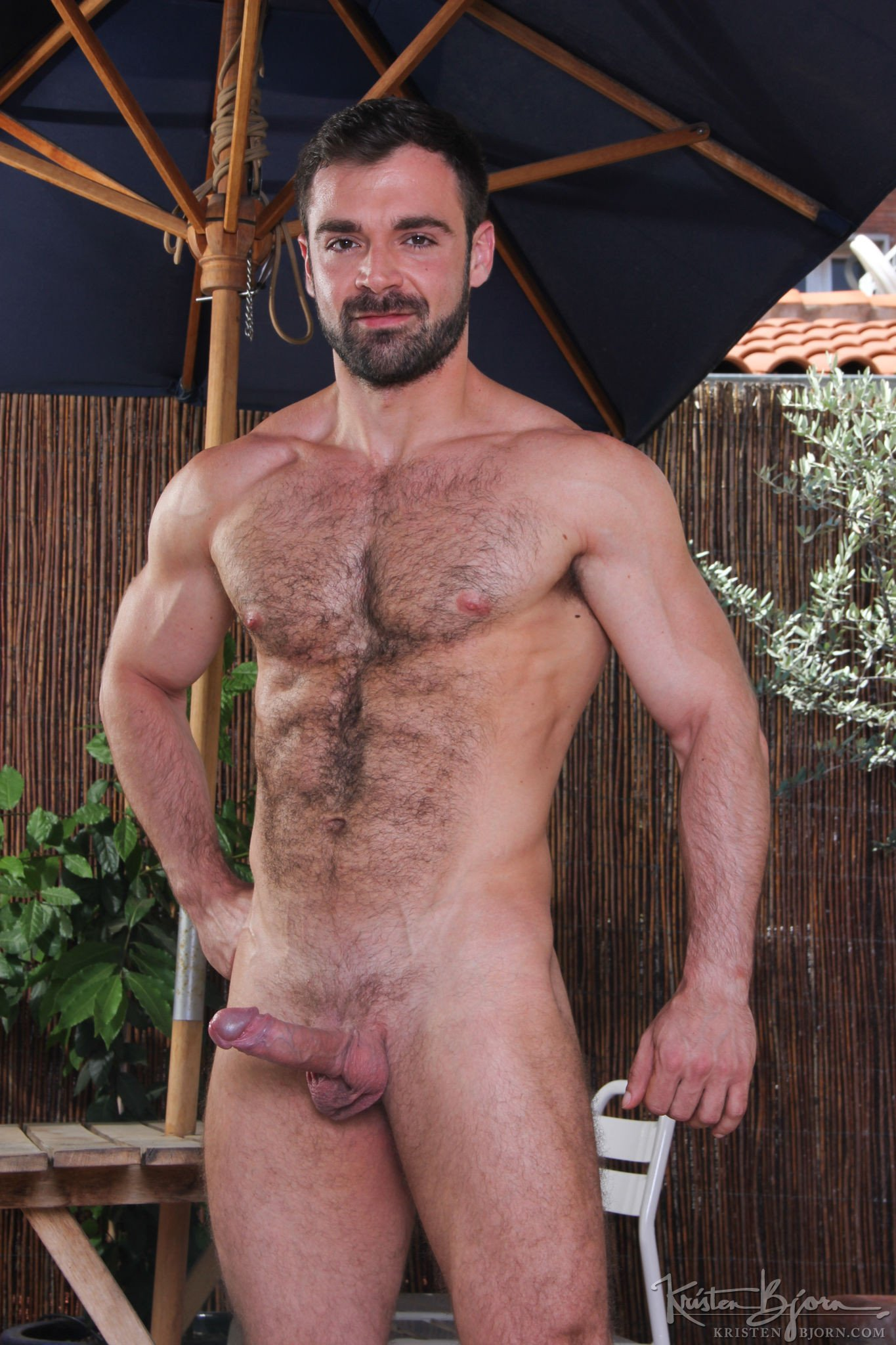 hairy gay holes free videos