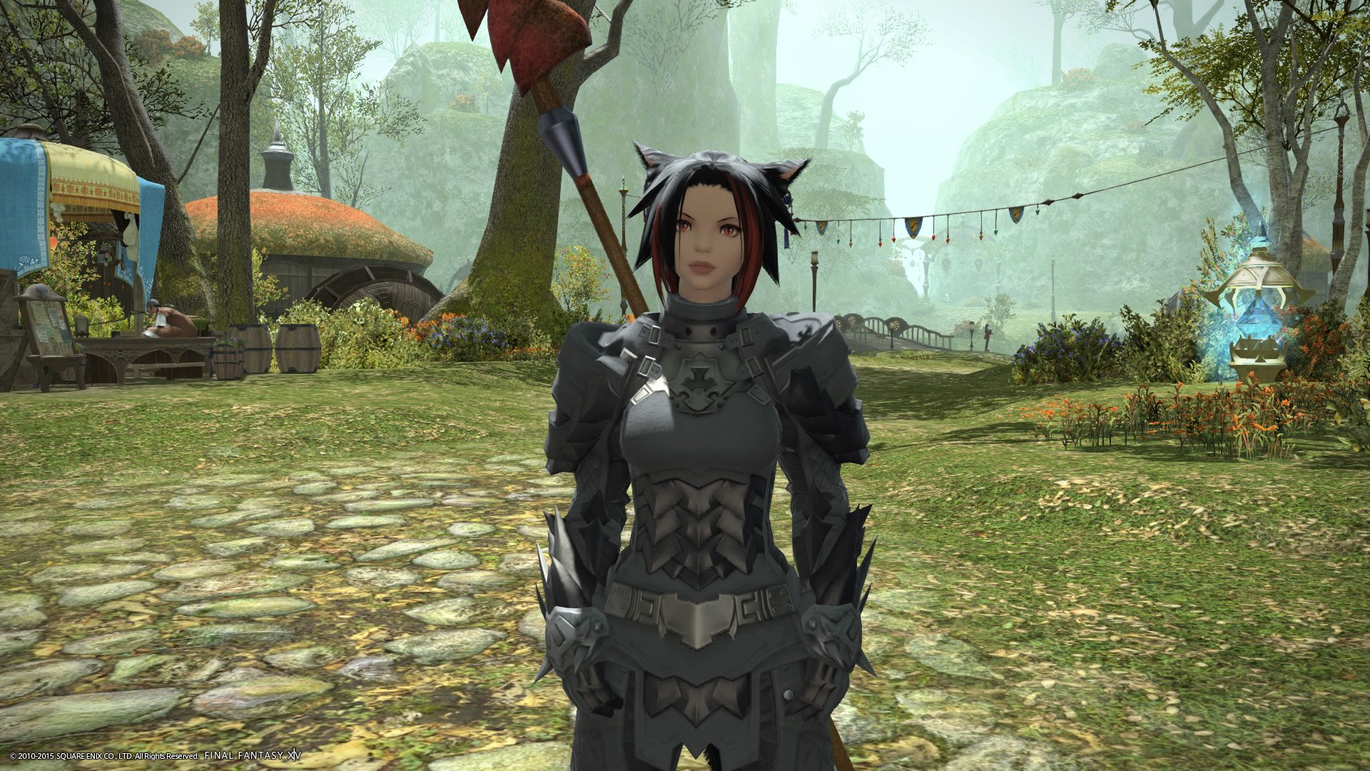 Changed my character in FFXIV from a Dragon Lady to a Cat