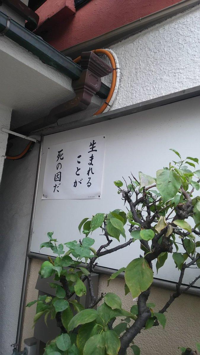 常にネガティブな箴言を掲げる近所の寺、ついにここまで来た感 pic.twitter.com/qhvwxj4pWH