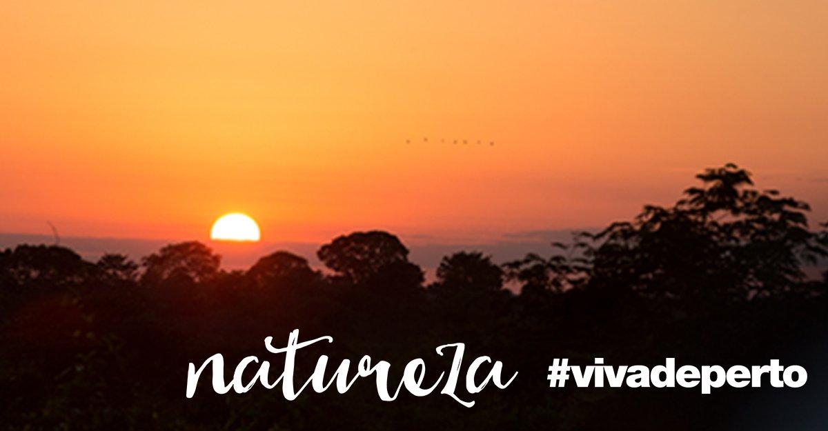 O Pantanal é Patrimônio Natural da Unesco e símbolo de biodiversidade