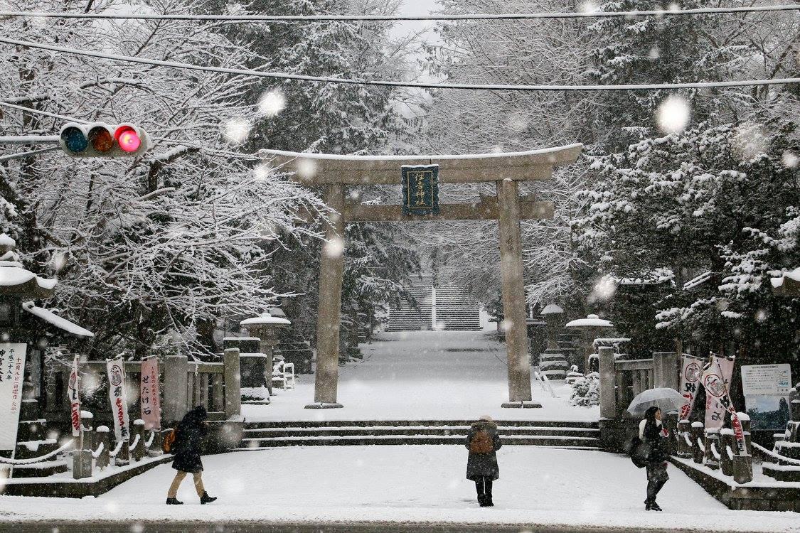 おはようございます。 今朝の8時30分ごろ、住吉神社は雪が積もり、すっかり冬景色になっていました。 https://t.co/CNIMzuh2kJ https://t.co/aFdB3pNSHr