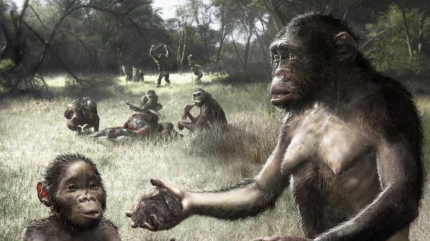 Chi è Lucy, la Australopiteco nel Doodle di Oggi
