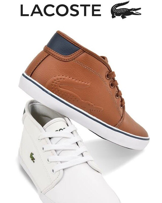 new lacoste shoes at spitz | BIN702 at the Container Park