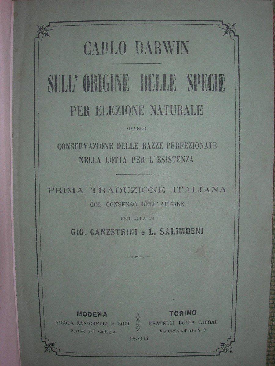 book общая органическая химия 1985