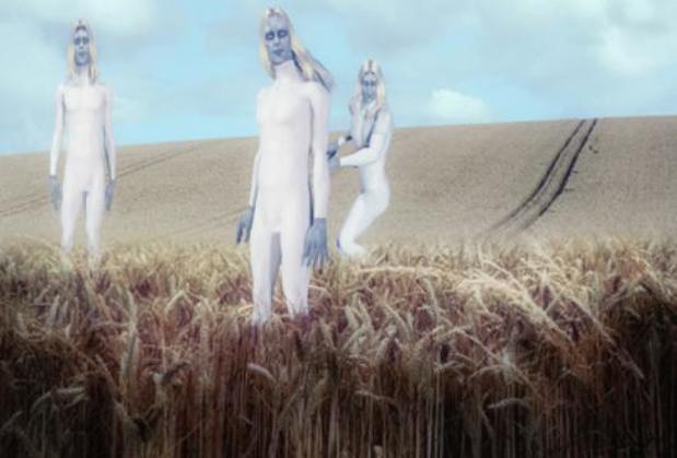 Avvistamento Alieno: Alieni Bianchi (Anunnaki?) in un Crop Circle (Cerchio nel Grano)