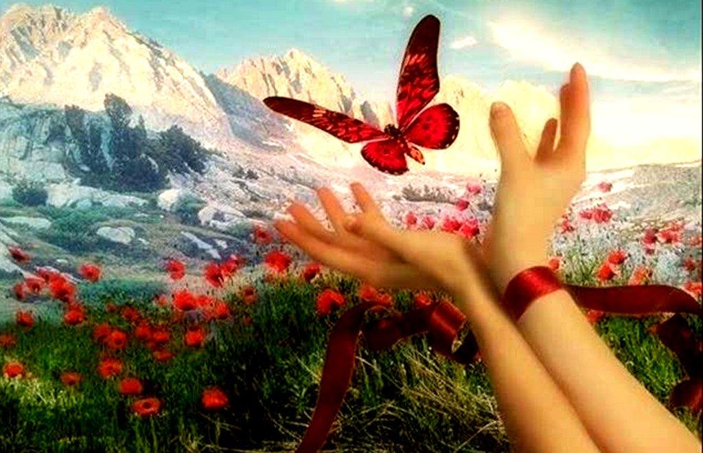 Открытка для вас наш мир открыт каждому