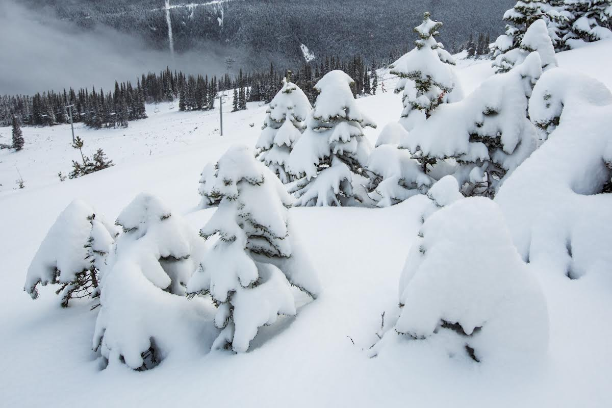 Hello, snow. #GoWhistler #WinterisComing https://t.co/gmDfjVFv2b