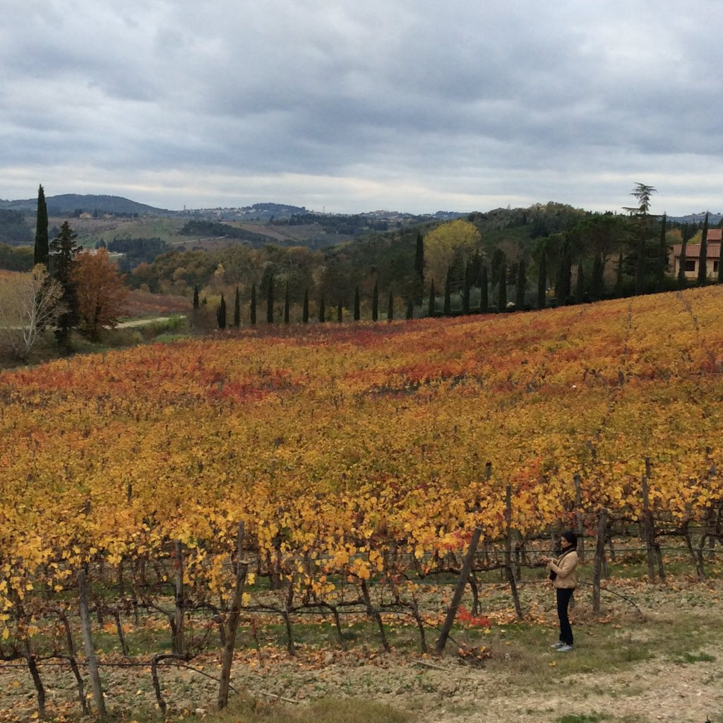 #chianti is splendid right now https://t.co/wPPkUCCbtx