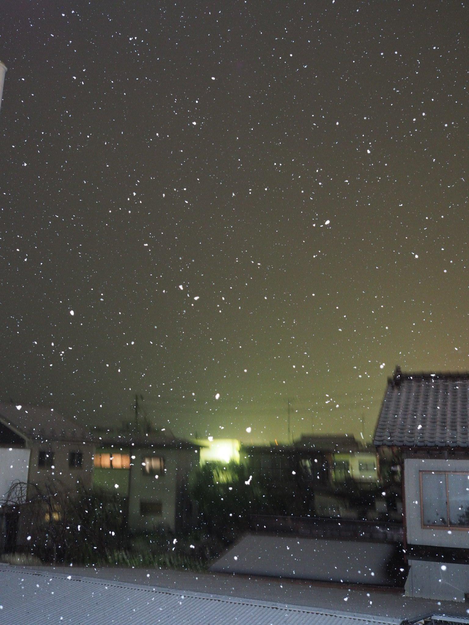 初雪(冬季情報)