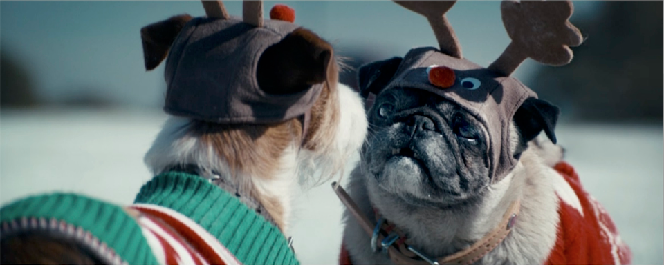 "RT @Creativepool: Asda - #BecauseitsChristmas ""dogs"" #CPSpotlight by @VCCP https://t.co/2nnYgi8kjw https://t.co/LOYIHBOE3s"