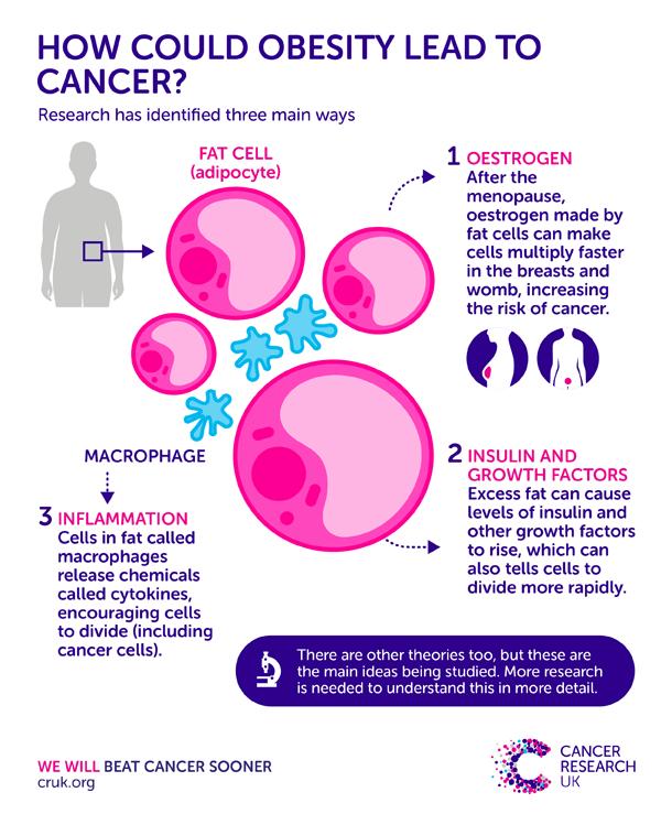 Jangan Cemas, Ini Cara Mencegah Kanker Darah Berdasarkan Jenisnya