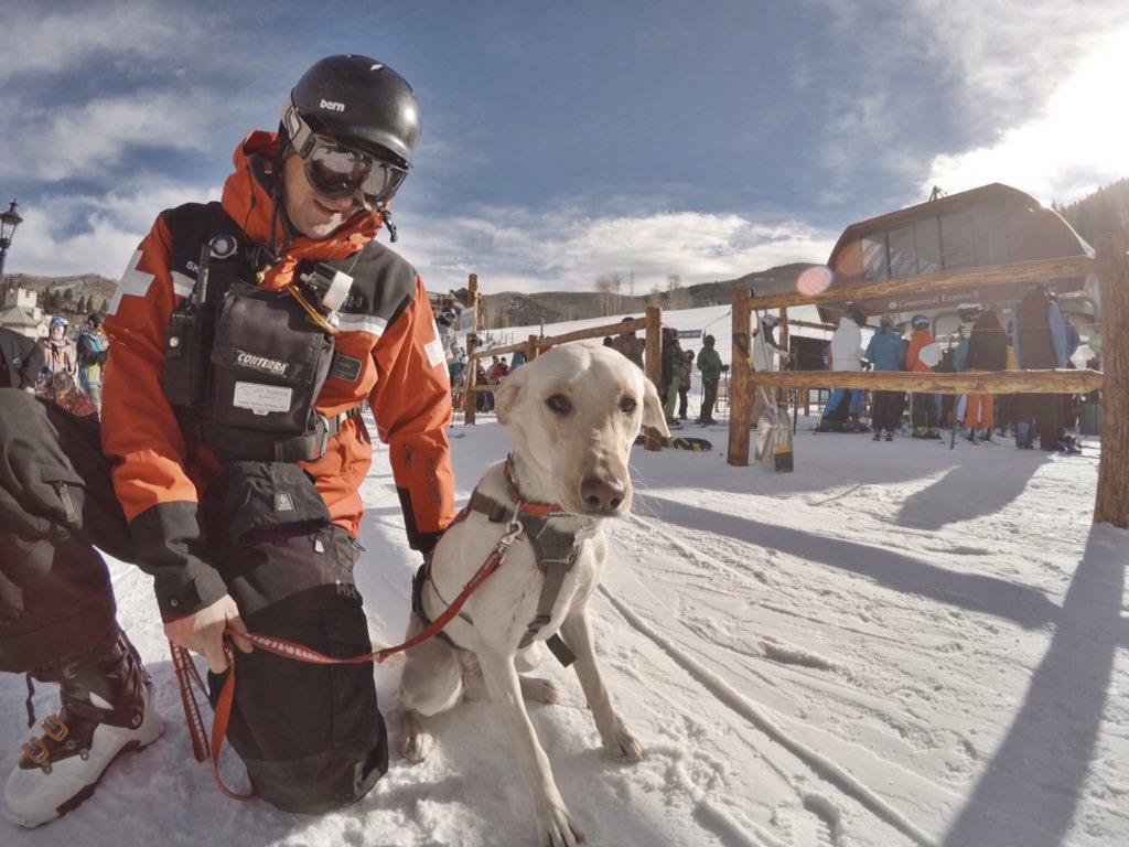 Annie the Patrol Dog enjoying opening day #GoPro #bcsnow https://t.co/z8skOoRSpF