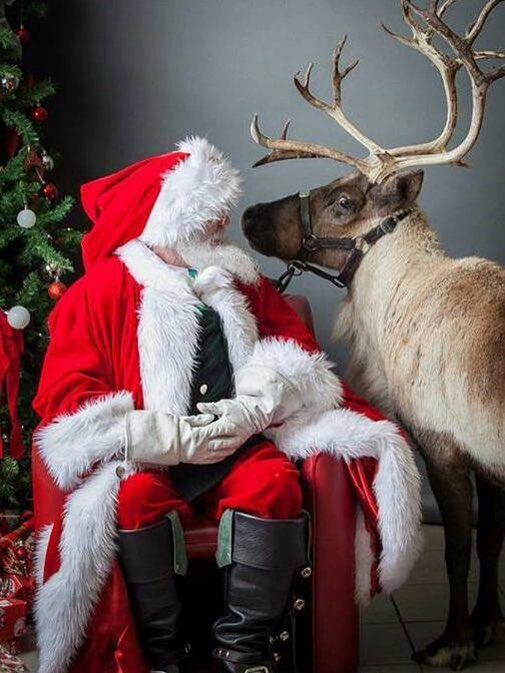 Ok boss @OfficialSanta, you know Mrs C doesn't like reindeer in the workshop! https://t.co/6D5z5WwElL