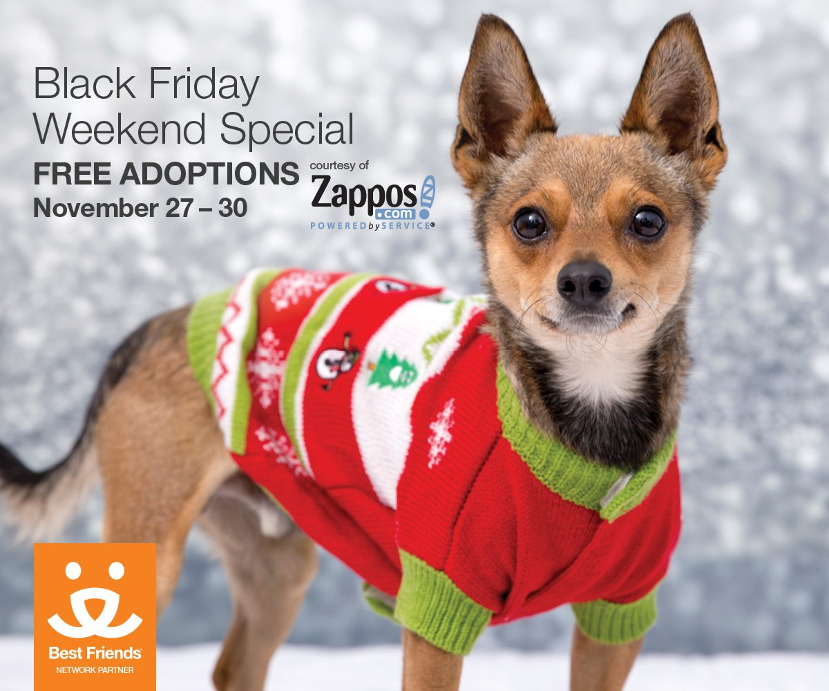 Waived fees #BlackFriday to #CyberMonday courtesy of @Zappos and @BestFriends! Learn more https://t.co/hWWVf750D0 https://t.co/pyF0LOMCyl