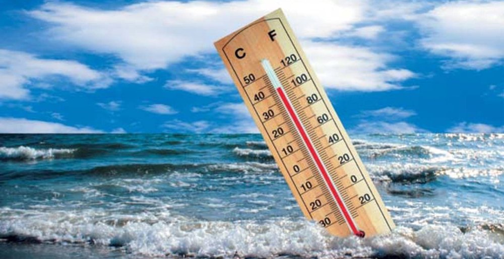 The climate change is directly responsible for the ocean's heat waves