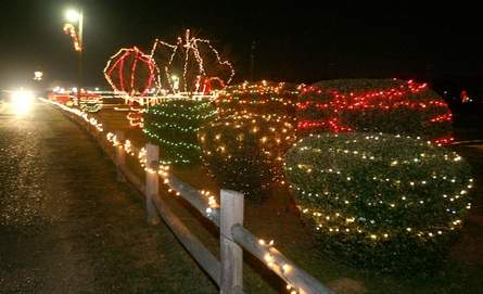 fayettes christmas at the park is open today through the end of the year httpwwwtuscaloosanewscomarticle20151125news1511298081007 - When Does Christmas In The Park Open