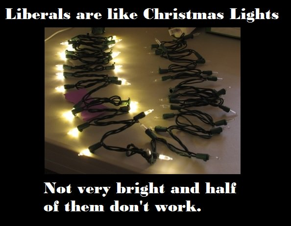Half Of Christmas Lights Dont Work.Redhead Mermaid On Twitter Liberal Are Like
