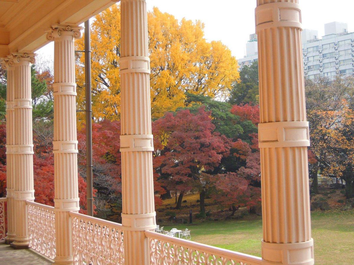 【旧岩崎邸庭園】ベランダから眺める紅葉もいいものです。