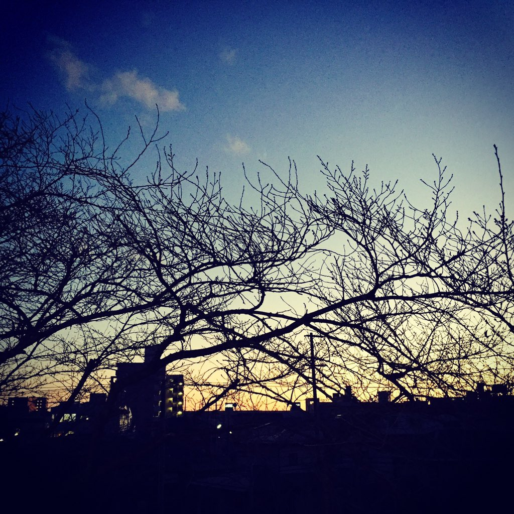 #学校の教室から見える景色 #写真好きな人と繋がりたい  #空pic.twitter.com/oEuNQvVSRO