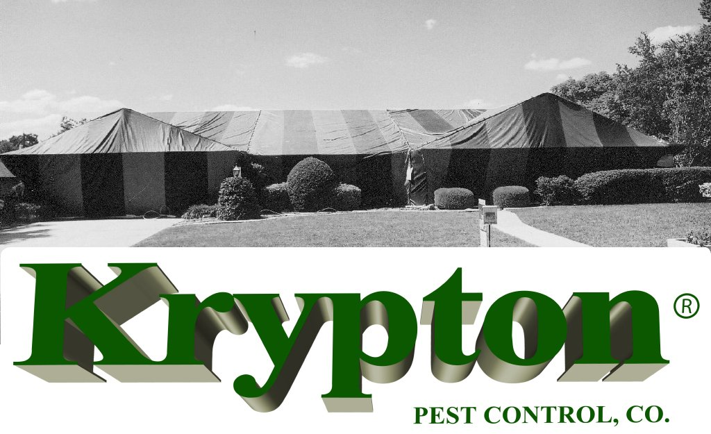 Krypton Pest Control on Twitter  Tent #Termite #Fumigation for 12 to 48 hrs. then aerated for a min of 6 hrs and tested for safe for re-entry #Miami ...  sc 1 st  Twitter & Krypton Pest Control on Twitter: