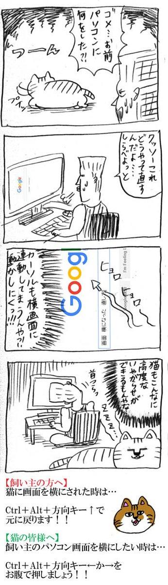 【4コマ漫画】ニャンコが仕掛けた高度なイタズラ