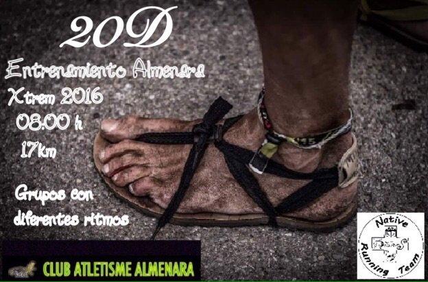 Grupo almenarax s&l fashions dress collection