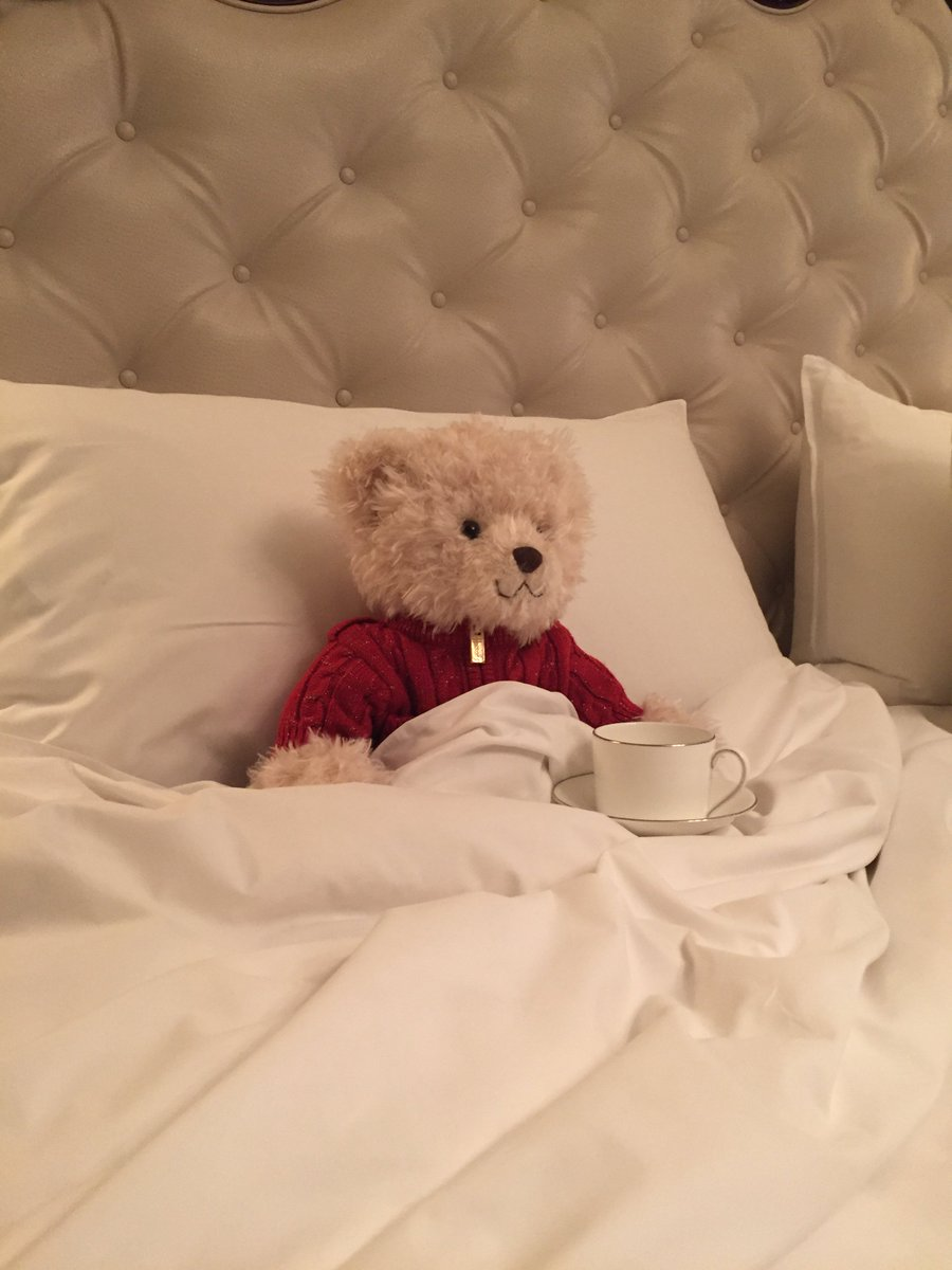 Benedict @Harrods Bear is all tucked up w/ his tea ready for his cosy weekend @MO_LONDON! https://t.co/qo6smUW4kR https://t.co/srParSAVJT