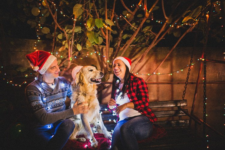 FYI: @zappos' campaign to bring a pet 'home for the pawlidayz' runs through Cyber Monday https://t.co/I52p2nz81s https://t.co/2NPJSiu5Oo