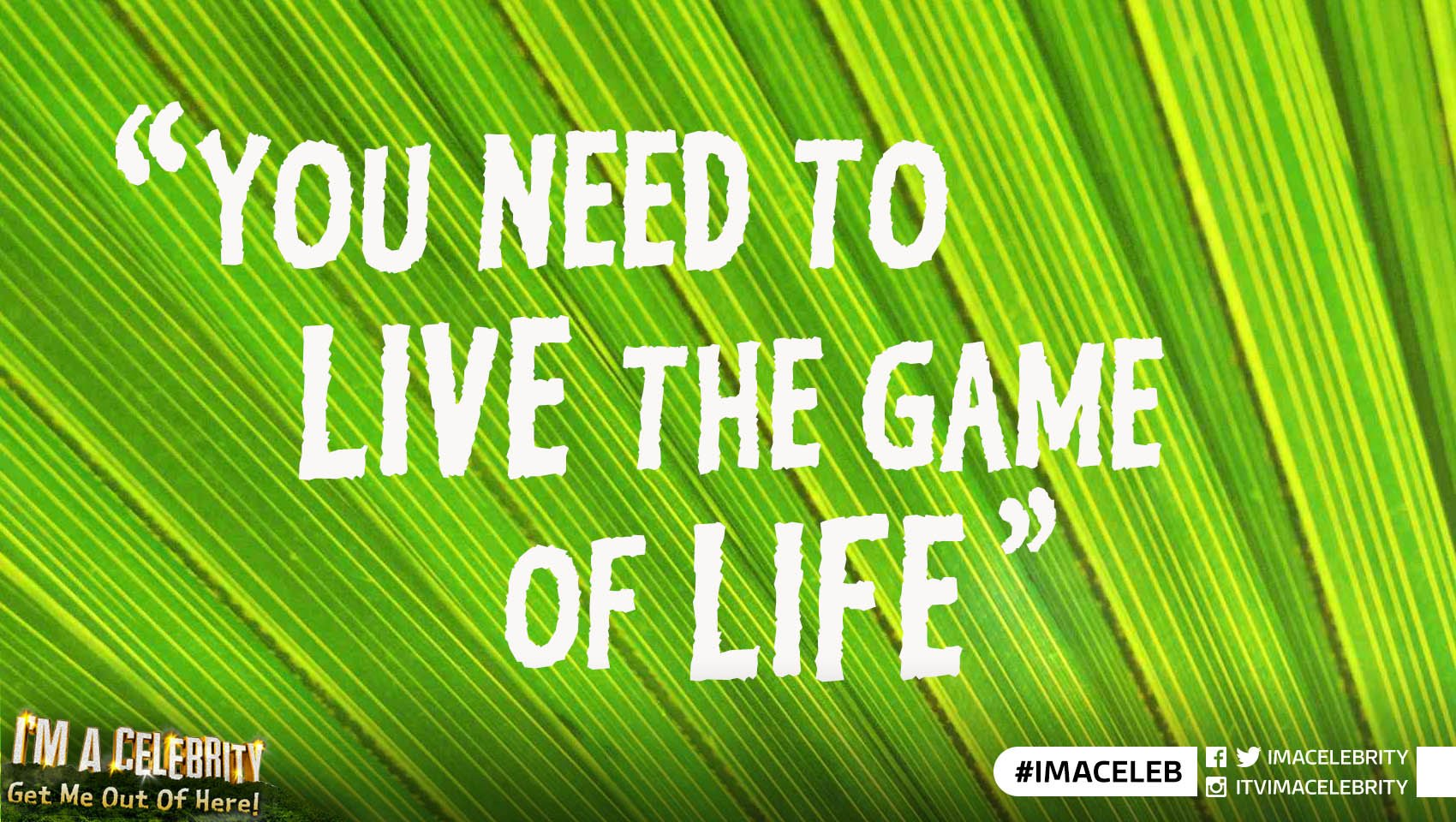 In the wise words of Chris Eubank, quit your moaning and live the game of life! #ImACeleb https://t.co/YLhxHsIqwn
