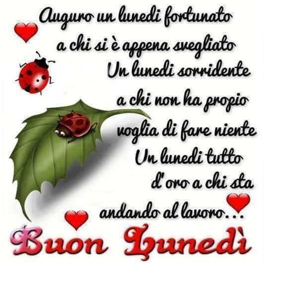 Vincenzobiondo On Twitter At Rdeldeserto Buongiorno Mia Cara Buon