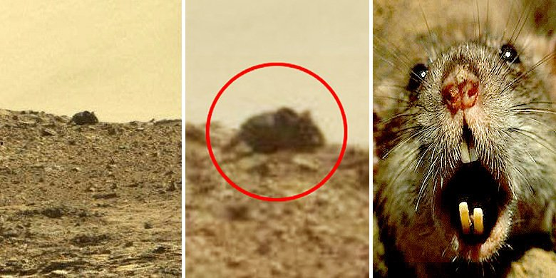 HIDE THE CHEESE! Giant Space 'Mouse' Spotted On Mars https://t.co/Wz6eDj8y6H https://t.co/1oGYQAUAwe