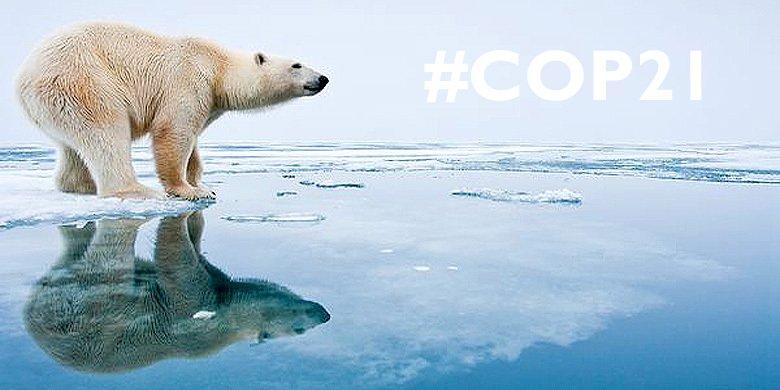 DON'T KILL THE PLANET!!! Clean Energy Is 100% Possible #COP21 https://t.co/gRQeW6tGKg https://t.co/pefyfBFd3s