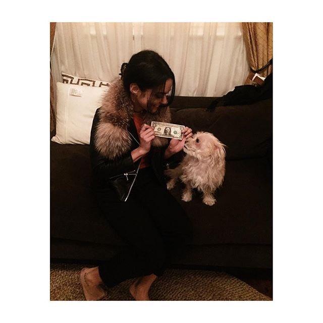 Darla & I support @Tuna_the_dog @barkbox & @WagAware #thanksGIVING #adollaradog campaign to benefit the ... https://t.co/fS77zU7d67