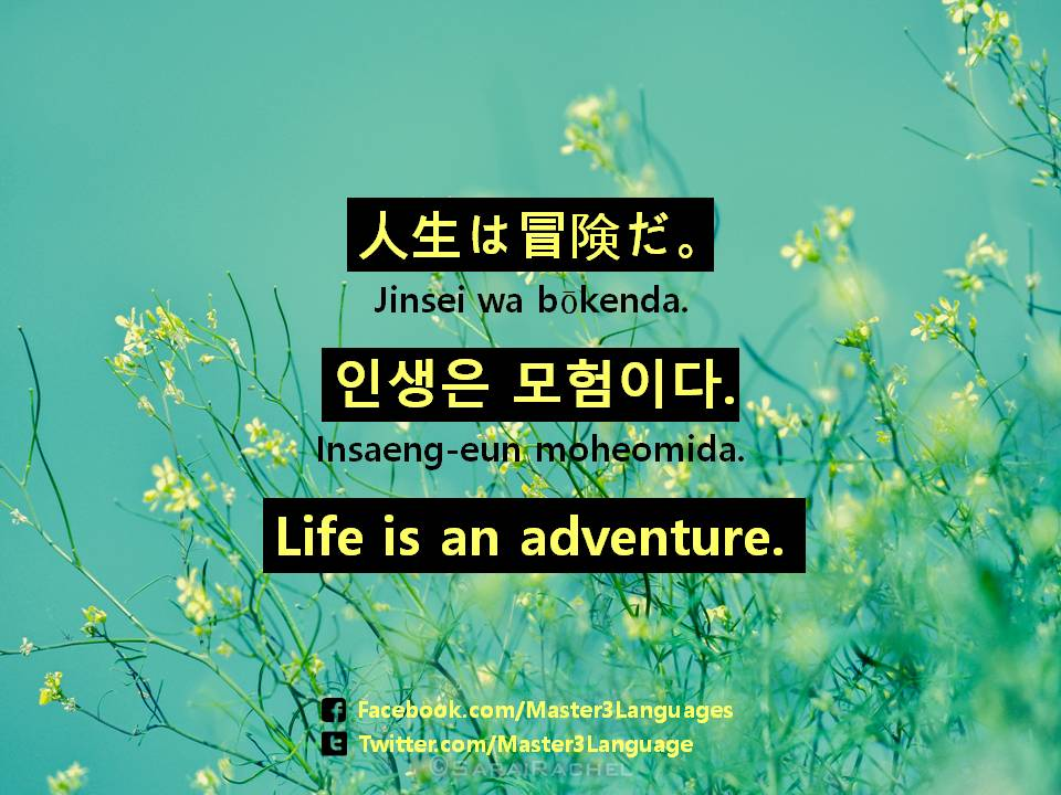 Master3languages On Twitter Inspirational Korean Quotes Https