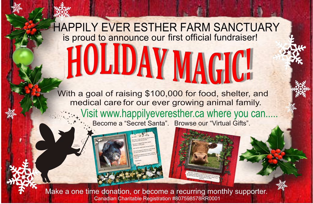 esther thewonder pig on twitter wwf looking for gifts that do