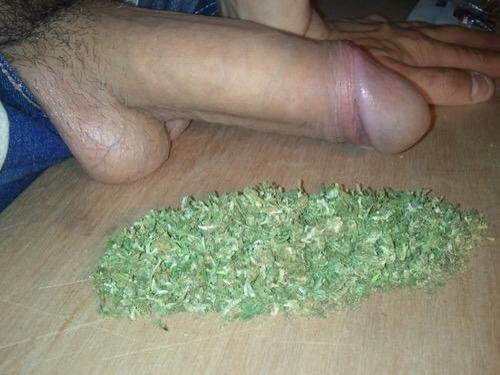 Suck dick for weed