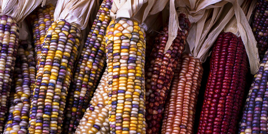 Why You Should Be Eating Peruvian Superfoods https://t.co/Vs49gWTUjc https://t.co/6lp0eVgFGf