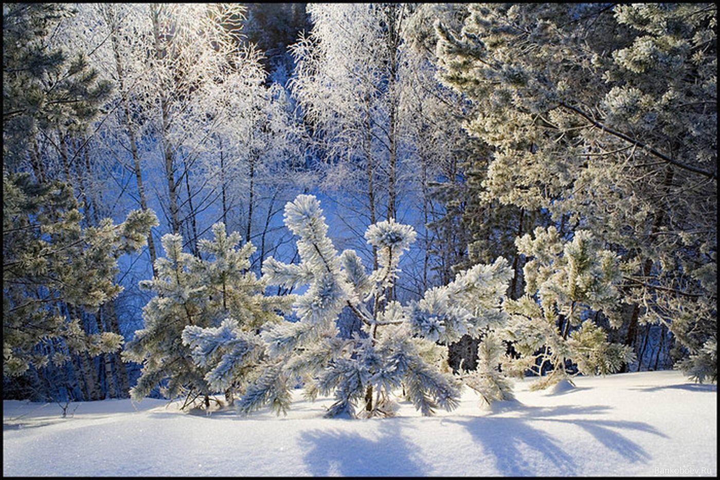 значит, что зимние пейзажи фото анимашки доме электричество