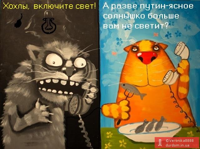 Села в оккупированном Крыму остались без электроэнергии - Цензор.НЕТ 4666