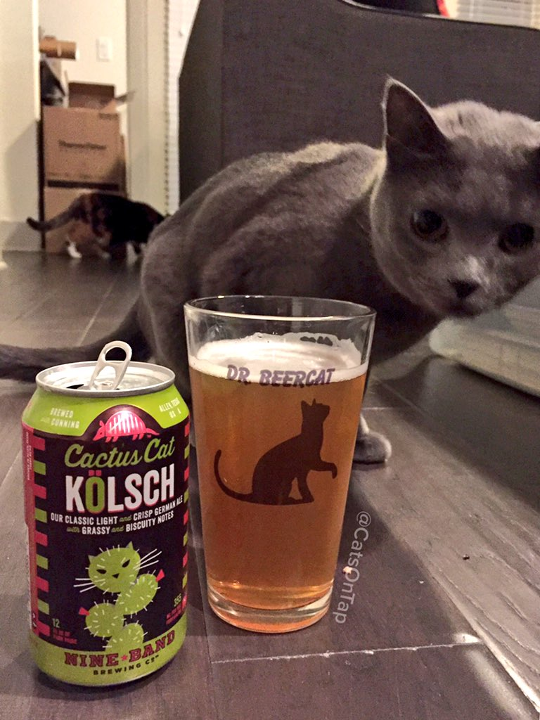 Nine Band Brewing Company - Cactus Cat Kolsch @NineBandBrewing