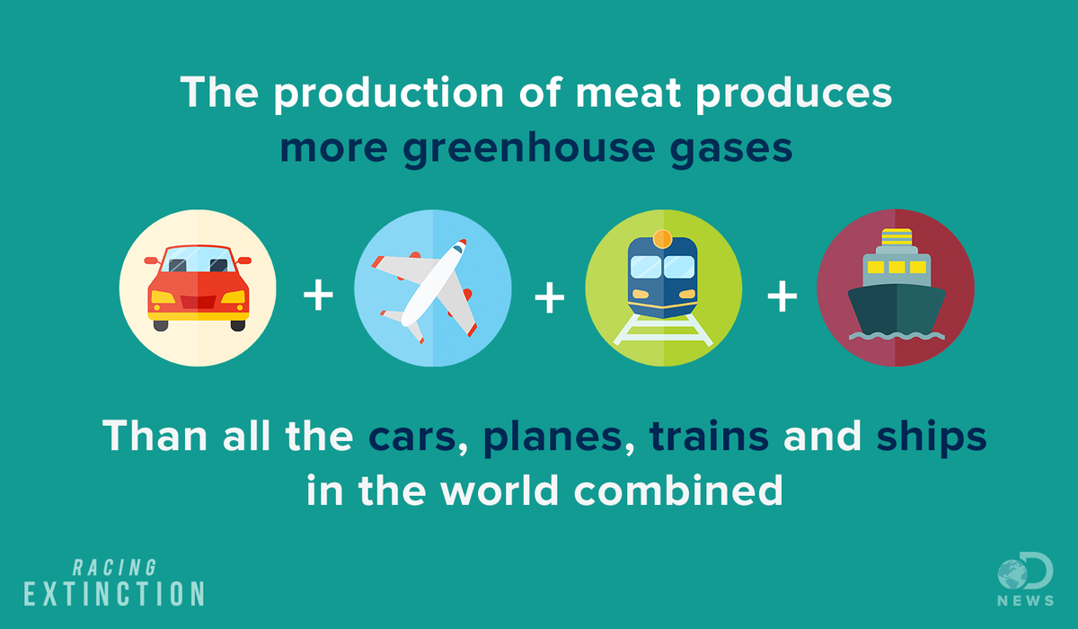 carbon dioxide and meat free meal The top 10 foods with the biggest environmental footprint tanya greenhouse gases such as methane and carbon dioxide called the meat eater's guide to.